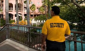 private security guard x